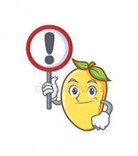 Mango15